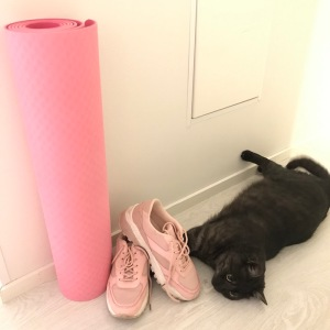 Cats and sneakers can be good quality without brands and breeds.